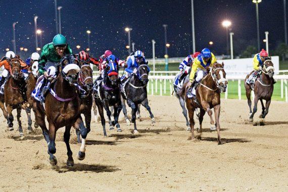 Meydan Racetrack