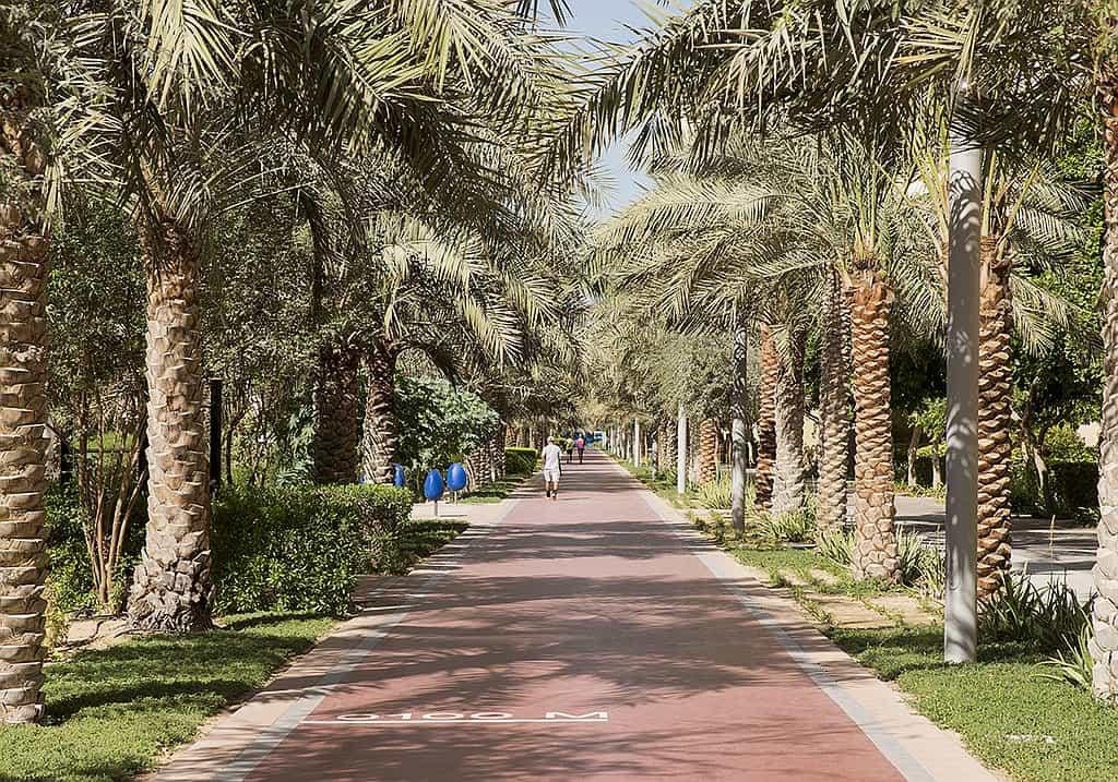 park Palm Jumeirah
