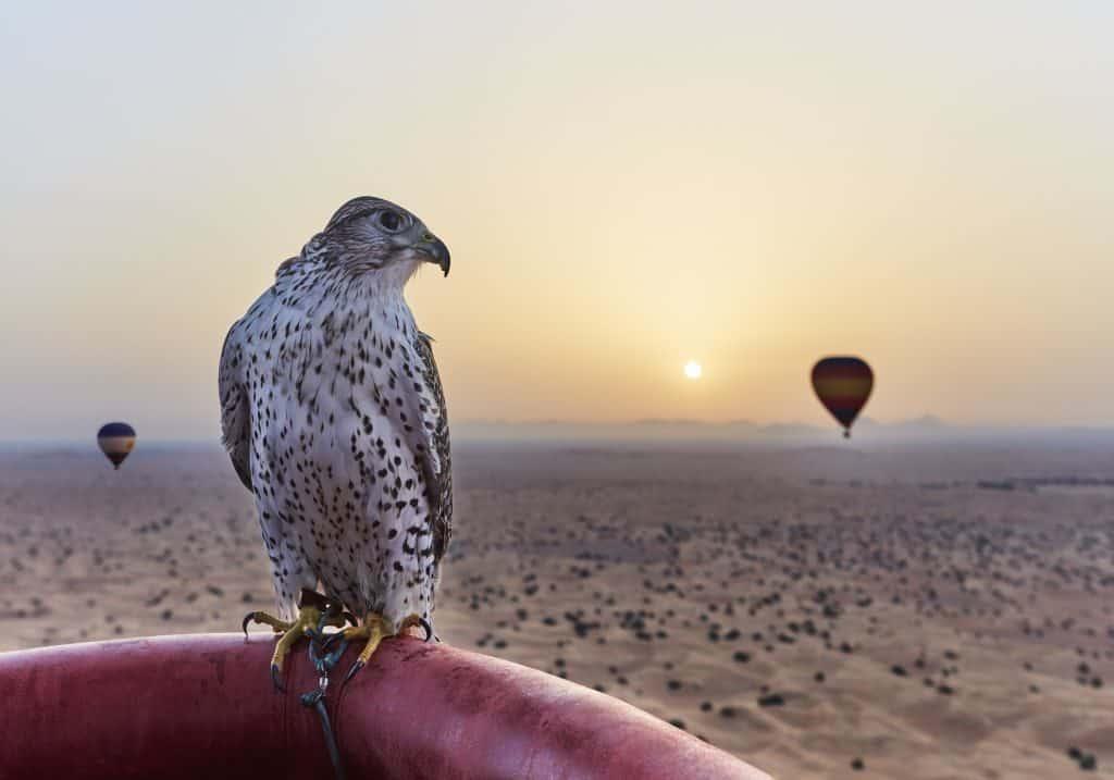 Heißluftballonfahrt in Dubai