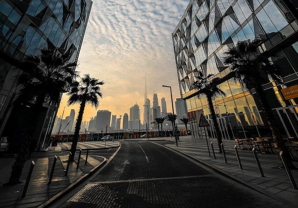D3 Skyline View