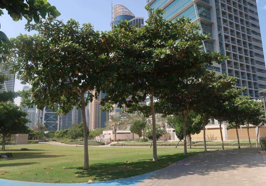 Blick in den Jumeirah Lake Towers ParkJLT