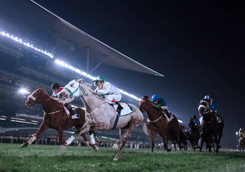 Pferderennen Dubai