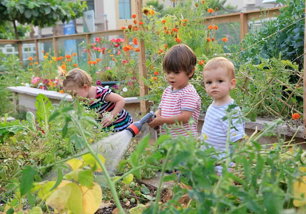 Garten nachhaltige Stadt