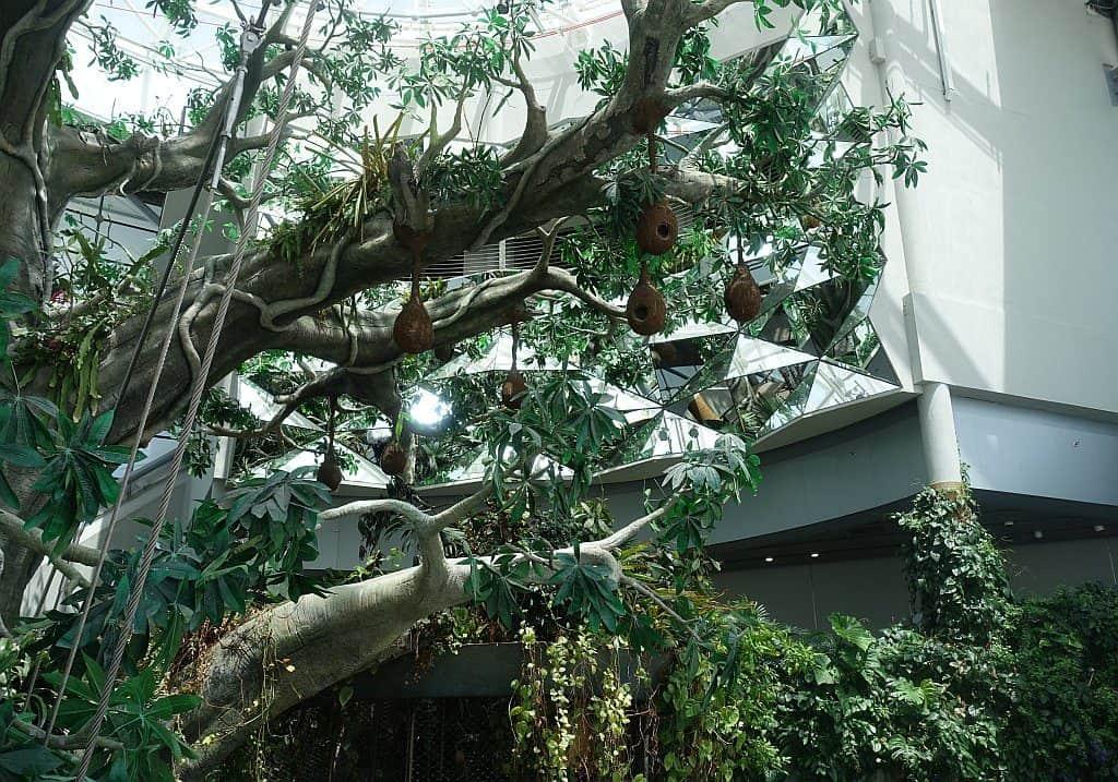 Green Planet Dubai Zoo